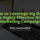 How to Leverage Big Data for a Highly Effective Direct Marketing Campaign - Pel Hughes print marketing new orleans